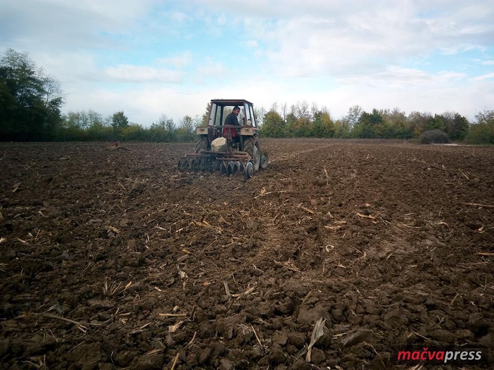 Setva Naslovna - Пшеница се још сеје